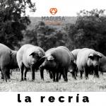 3ºBLOG_JUNIO_MAGUISA (1)
