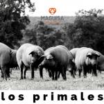 3ºBLOG_JUNIO_MAGUISA