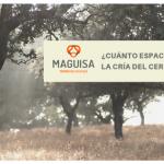 1ºBLOG_JULIO_MAGUISA