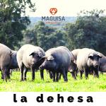 1ºBLOG_AGOSTO_MAGUISA