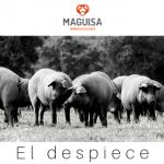 4ºBLOG_SEPTIEMBRE_MAGUISA
