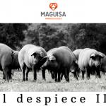 2ºBLOG_OCT_MAGUISA