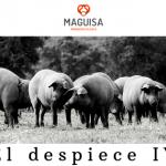 3ºBLOG_OCT_MAGUISA