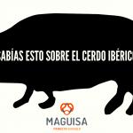 3ºBLOG_JUN_MAGUISA