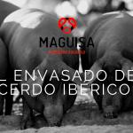 4ºBLOG_JUN_MAGUISA