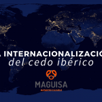 2ºBLOG_ENE_MAGUISA
