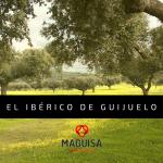 1ºBLOG_JUL_MAGUISA